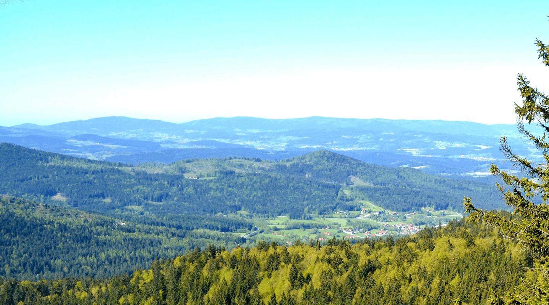 Waldwipfelweg St Englmar Im Bayerischer Wald Wandern In Schwindelerregenden 30 Metern Hohe Kinderwagen Geeignet